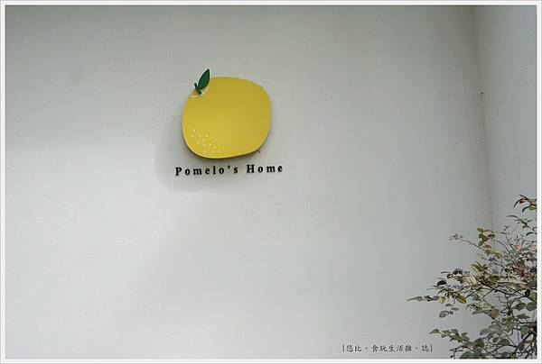 柚子-2-外觀.JPG