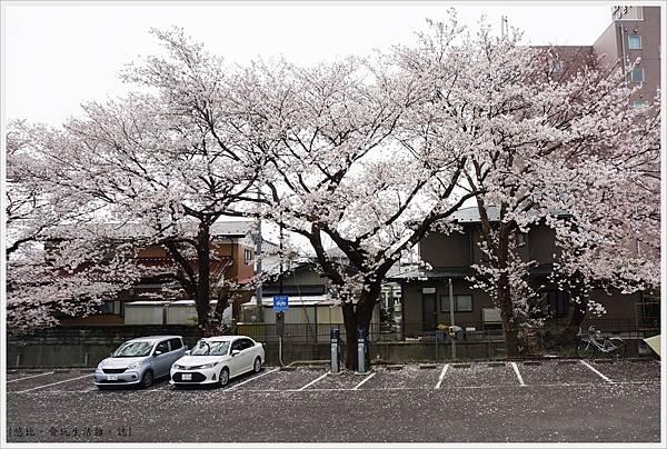 船岡-1-停車場.JPG