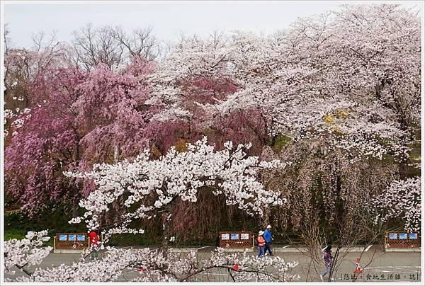 船岡-26-船岡城跡公園.JPG