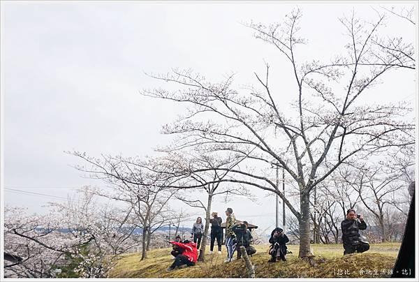 船岡-30-船岡城跡公園.JPG