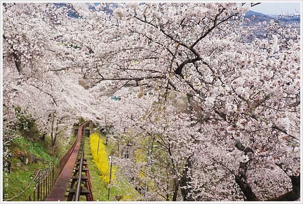 船岡-41-船岡城跡公園.JPG