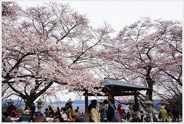 船岡城跡公園-67.JPG