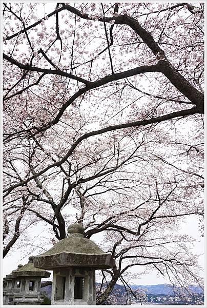 船岡城跡公園-71.JPG