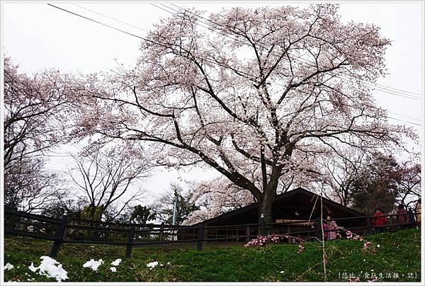 船岡城跡公園-77.JPG