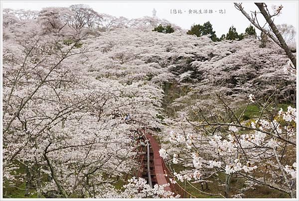 船岡城跡公園-82.JPG