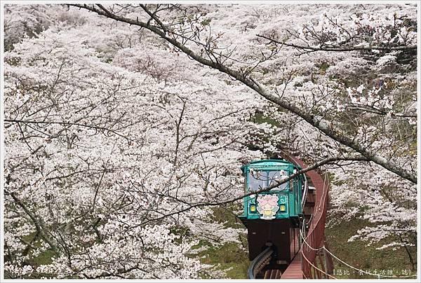 船岡城跡公園-84.JPG