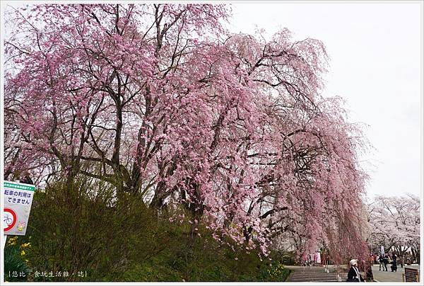 船岡城跡公園-88.JPG