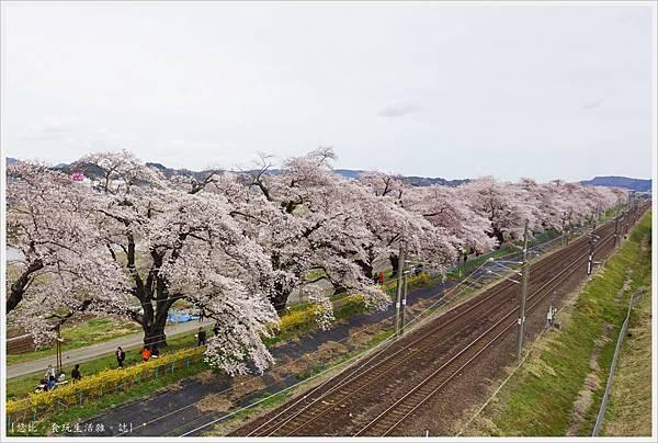 船岡城跡公園-99.JPG