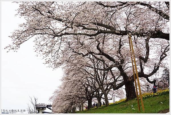 船岡城跡公園-116.JPG