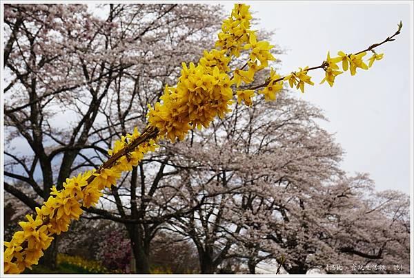 船岡城跡公園-118.JPG