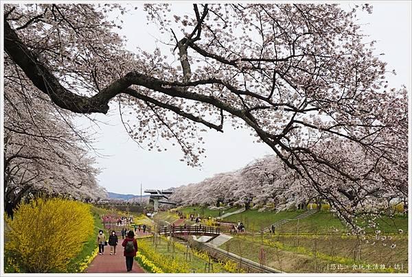 船岡城跡公園-120.JPG