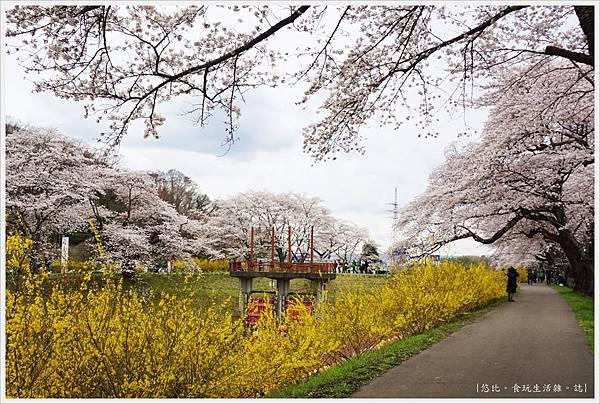 船岡城跡公園-119.JPG