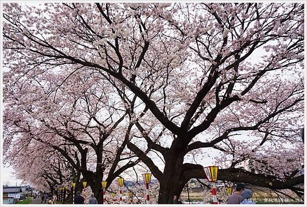 船岡城跡公園-144.JPG