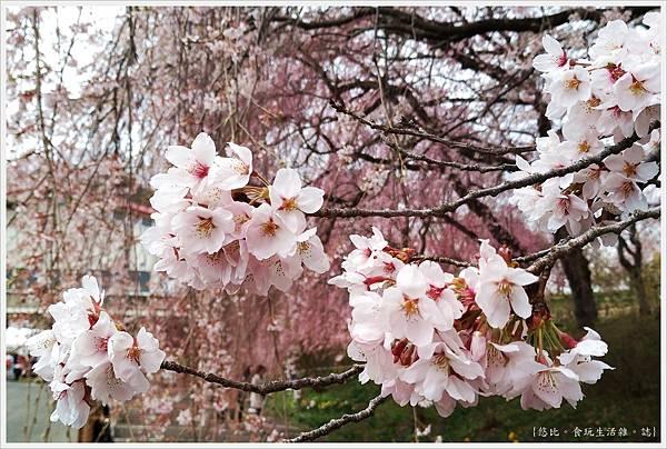 船岡城跡公園-155.jpg