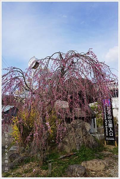 花見山-23-公園入口.JPG