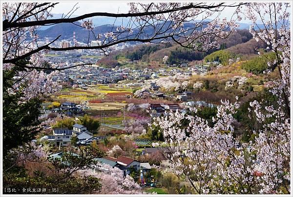 花見山-49.JPG