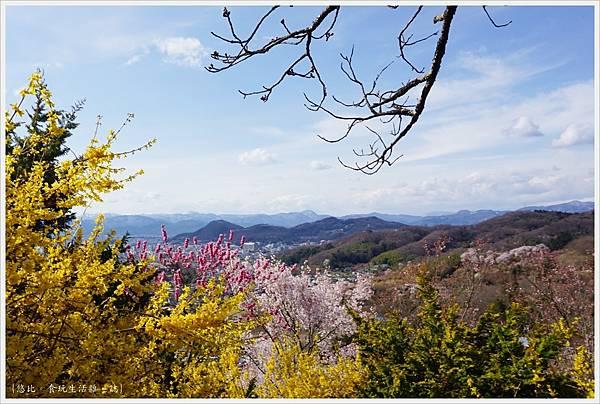 花見山-52.JPG