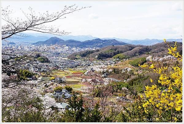 花見山-54-公園頂上.JPG