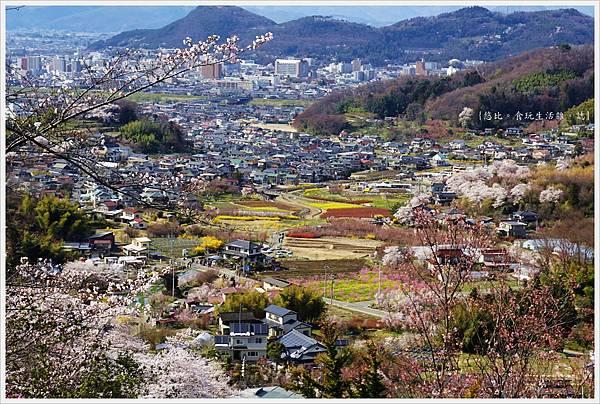 花見山-55-公園頂上.JPG