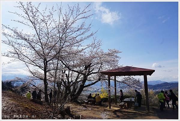 花見山-66.JPG