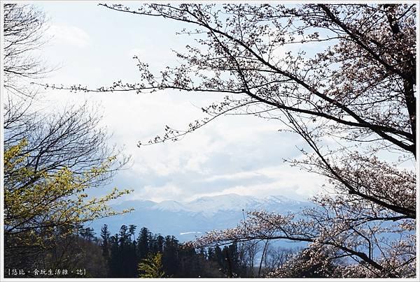 花見山-65.JPG