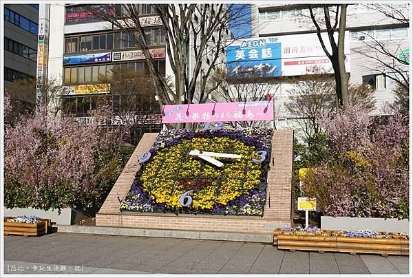 花見山-116.JPG