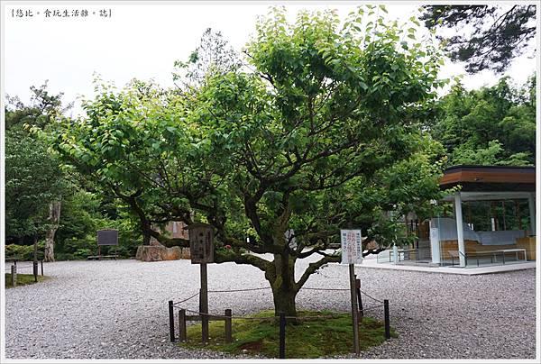 尾山神社-13.JPG
