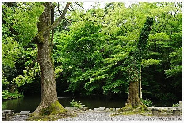 尾山神社-19.JPG