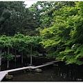 尾山神社-54-藤棚.JPG