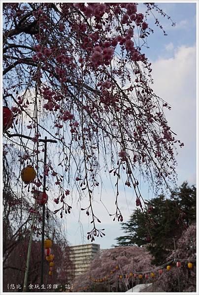 榴岡公園-4.JPG