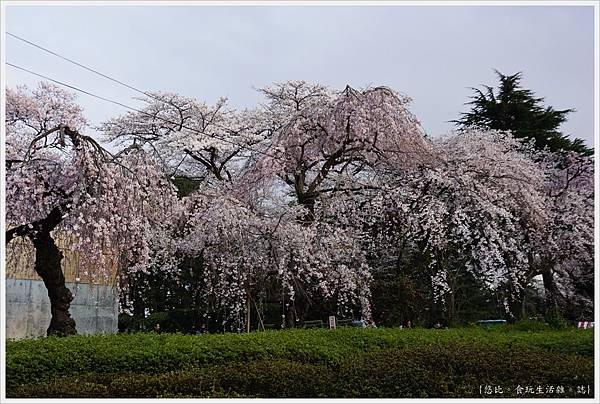 榴岡公園-11.JPG