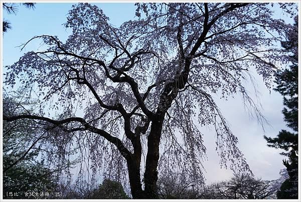 榴岡公園-28.JPG