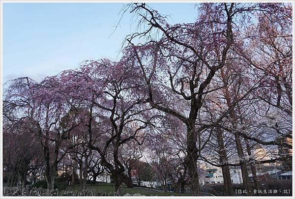 榴岡公園-32.JPG