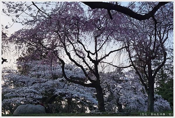 榴岡公園-37.JPG