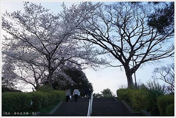 榴岡公園-39.JPG