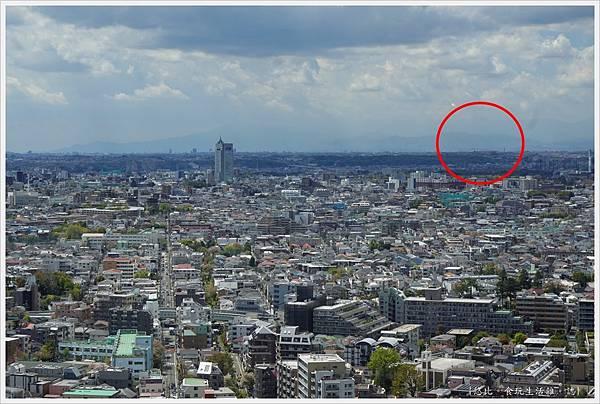 CARROT TIWN-2-富士山方向.JPG