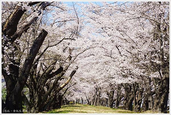 開成山公園-3.JPG