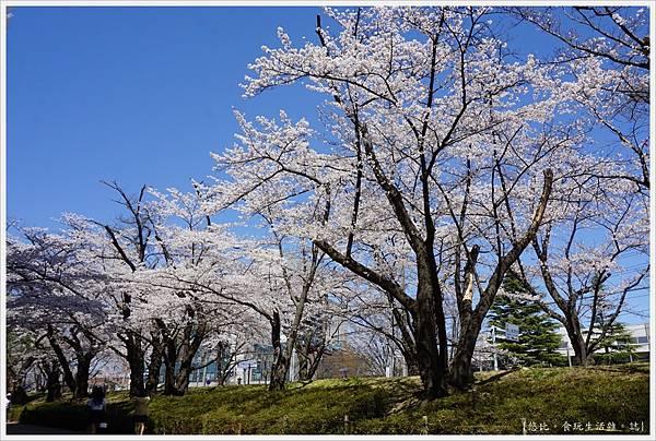 開成山公園-5.JPG