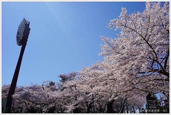 開成山公園-8.JPG