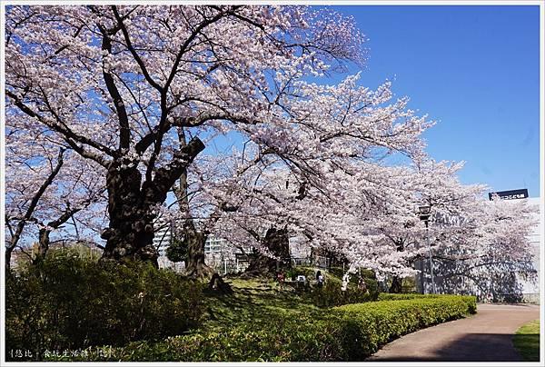 開成山公園-9.JPG