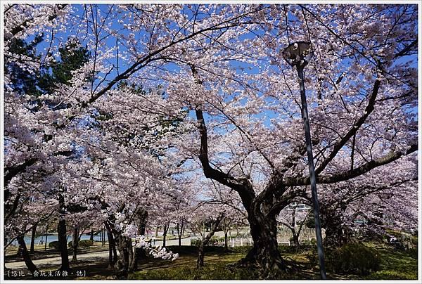 開成山公園-10.JPG