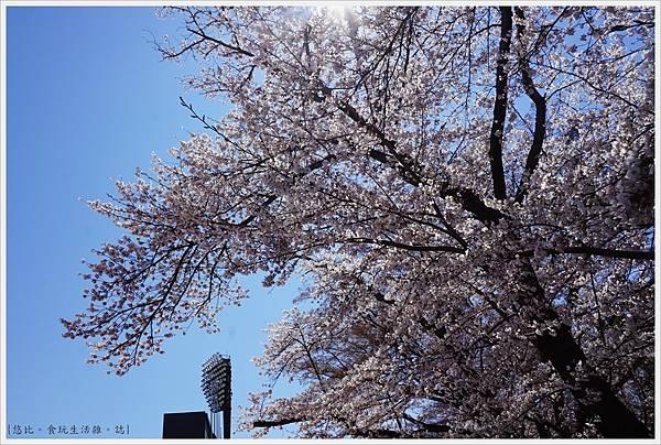 開成山公園-18.JPG