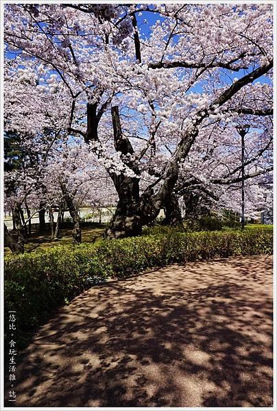 開成山公園-14.JPG