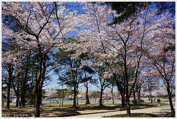 開成山公園-20.JPG