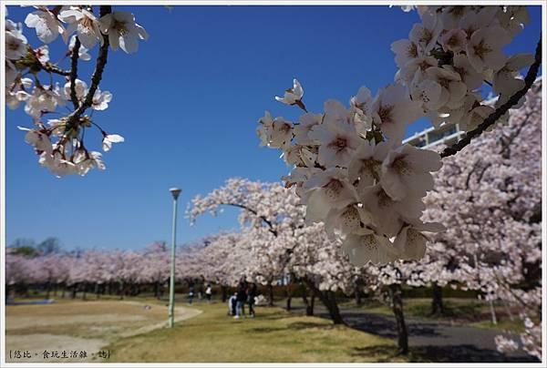 開成山公園-32.JPG