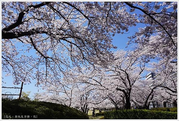 開成山公園-38.JPG