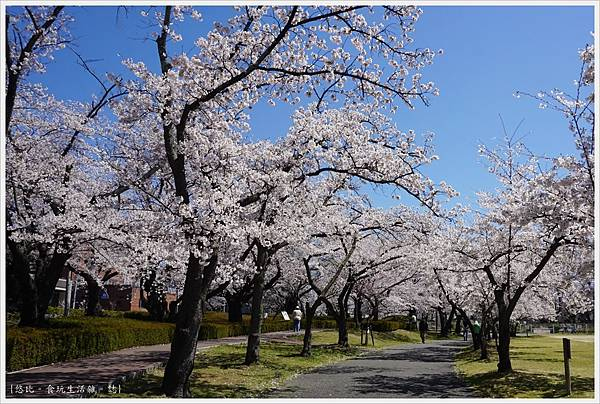 開成山公園-43.JPG