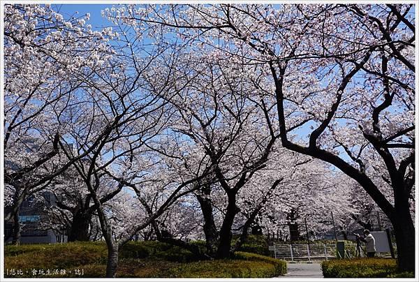 開成山公園-41.JPG