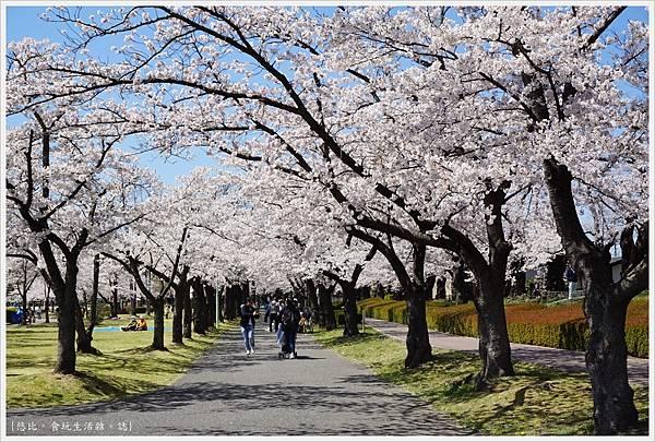 開成山公園-44.JPG