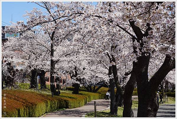 開成山公園-46.JPG